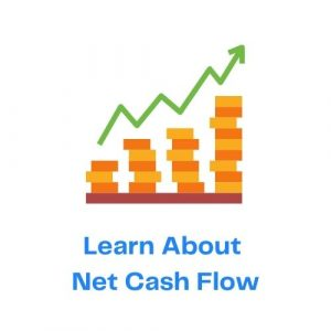 Learn About Net Cash Flow with Icon